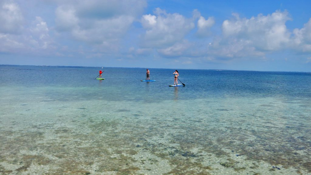 paddle board in abaco