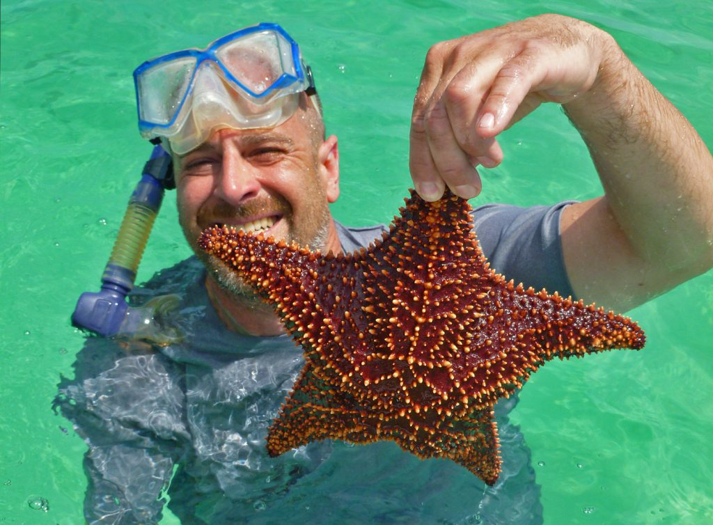 starfish at Tilloo